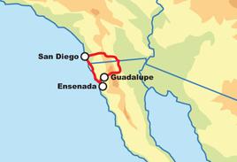 Discover Baja Tour