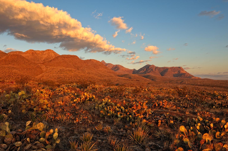 North Italia Scottsdale >> El Paso Motorcycle Rentals - Harley-Davidson Rentals | EagleRider